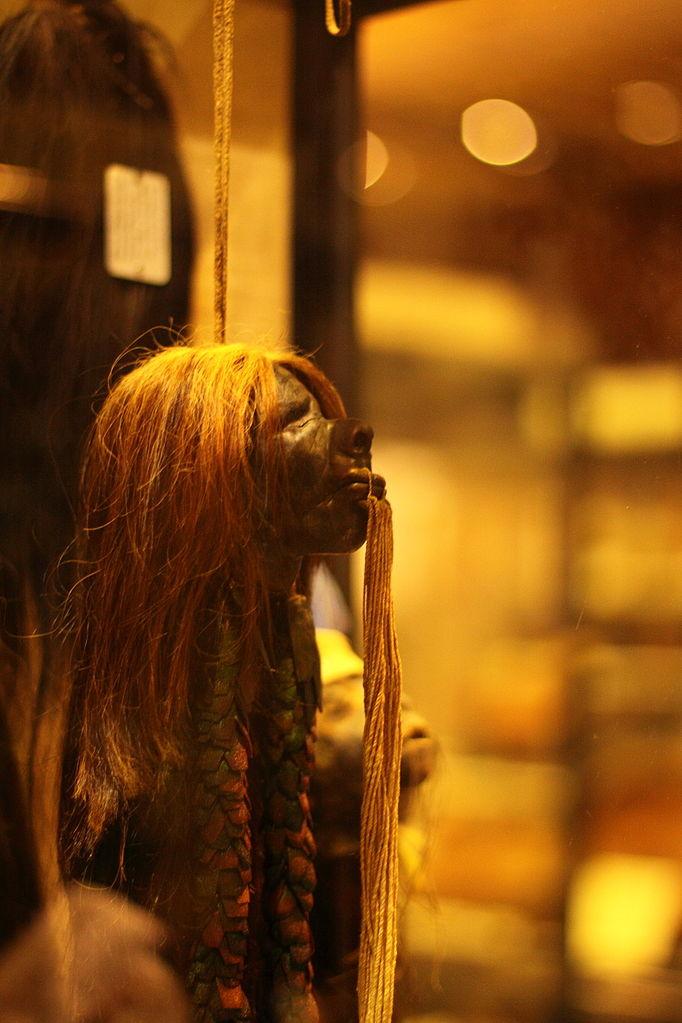 皮特・里弗斯博物館中的亞馬遜原住民特製首級 (Photo by Narayan k28, License: CC BY 3.0, Wikimedia Commons提供)
