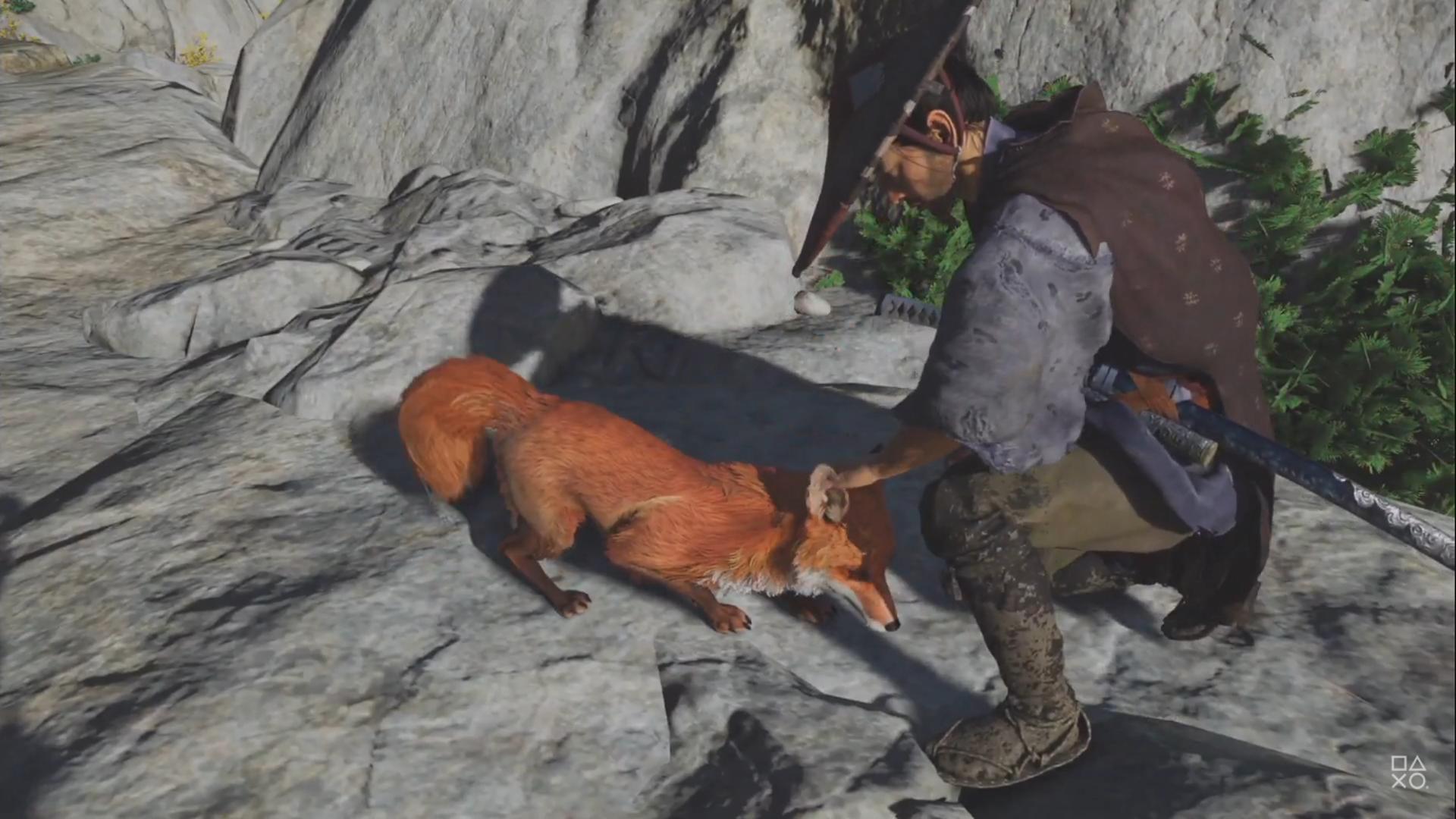 當初預告,不知道有多少玩家期待摸狐狸。(圖源:Ghost of Tsushima)
