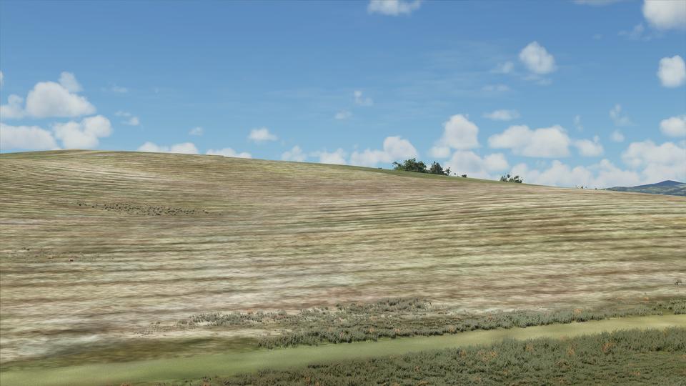 《微軟模擬飛行2020》中的 Bliss 畫面(Credit:Reddit)