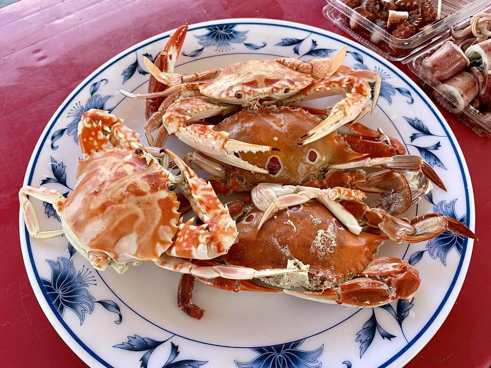萬里蟹(Photo Credit: bryan... @Flickr CC BY-SA 2.0,圖片來源:https://www.flickr.com/photos/91049143@N00/45229252974)