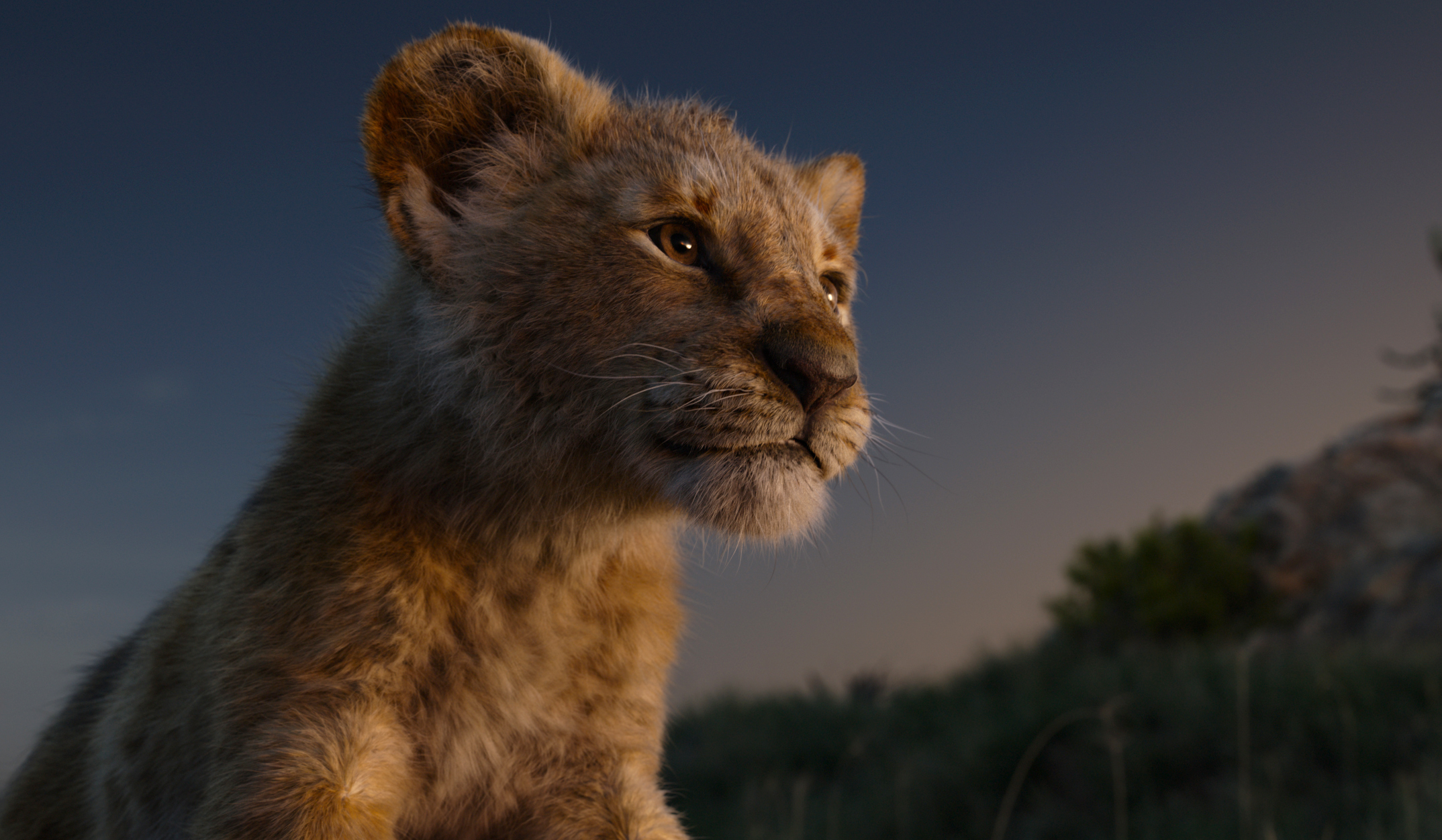 A Lion King sequel is coming with Barry Jenkins as the director