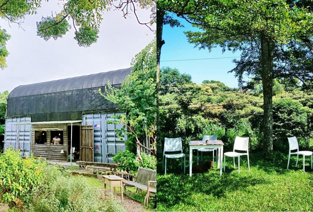 papa三芝素有溫室咖啡之稱,室內室外皆被綠意圍繞。
