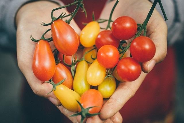 農遊超市在ITF 一網打盡最夯農業體驗