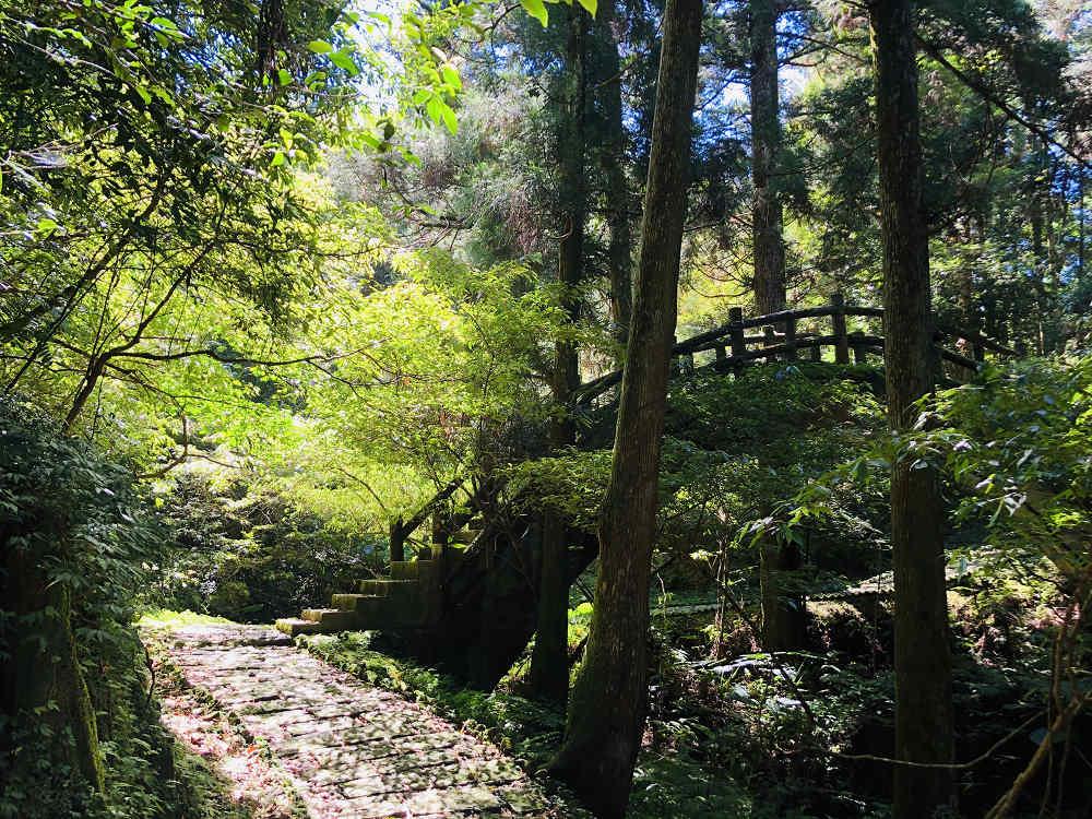 自導式步道(圖片來源:行政院農業委員會林務局)