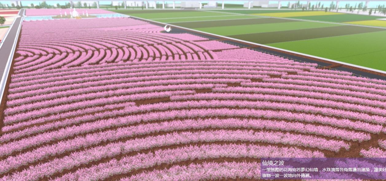 2020桃園仙草花節(PHOTO BY:桃園市政府農業局)